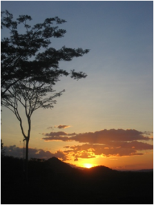 Palo Verde, Costa Rica